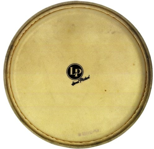 Latin Percussion LP 961 (12 1/2' Natur) Djembe Heads