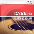 D'Addario EJ17 Phosphor Bronze, Medium