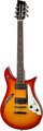 Duesenberg Double Cat 12-String (fireburst)