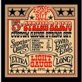 Ernie Ball 2312 5-String Banjo Light