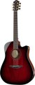 Furch 42-SM D Cut Red Top (with LR Baggs Stagepro Element)