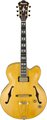Ibanez PM2 (Antique Amber) Chitare Modele Hollowbody