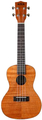 Kala Exotic Mahogany Concert Ukulele with Bag