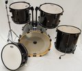 Pearl Shellset Demo Model Forum (jet black)