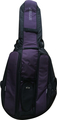 Ritter Double Bass 1/4 (Black/Raspberry)