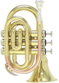 Roy Benson PT-101 / Bb Pocket Trumpet