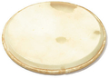 Sonor for LHDN 13 (V 1620) / Natural Drum Head (13')