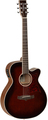 Tanglewood TW4WB (whiskey barrel gloss)