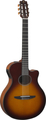 Yamaha NTX500 (brown sunburst)